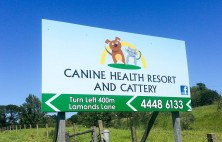 roadside signs canine health resort cattery